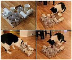 katzenspielzeug selber basteln diy puzzle feeder cat diy cat toys diy cat toys