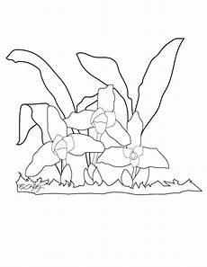 dibujo de los simbolos naturales para colorear imagenes de simbolos patrios de guatemala para colorear imagui