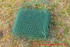 was hilft gegen maulwurf wie kann den maulwurf aus dem garten vertreiben