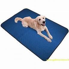 tappeto per cani tappeto refrigerante per cani aqua coolkeeper