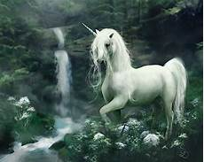 any color large unicorn wall unicornio fondo de pantalla and fondo de escritorio