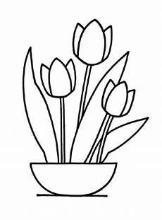 Ausmalbilder Blumen Tulpen Ausmalbilder Tulpen 2 Tulpen Malvorlagen