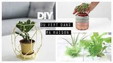diy d 233 co pot en ciment terrarium and more