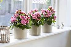 window sills how to choose the finishing touch of your