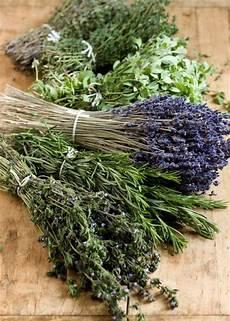Herbes De Provence By Jaques Pepin Recipe Herbes De