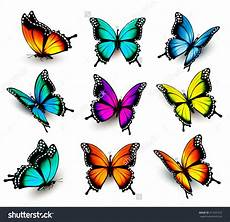 Schmetterling Malvorlage Bunt Collection Of Colorful Butterflies Flying In Different