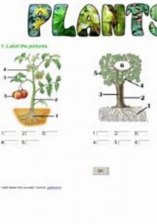 plants worksheets for primary 13486 esl exercises plants