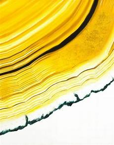 mellow yellow xk shades of yellow art color stories