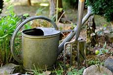 pflanzen während urlaub bewässern bew 228 sserung mit diesen 5 tipps 252 berleben alle pflanzen