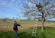 bäume schneiden bei solawi pforzheim enz