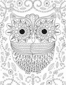 big eyed owl adult coloring page favecrafts com