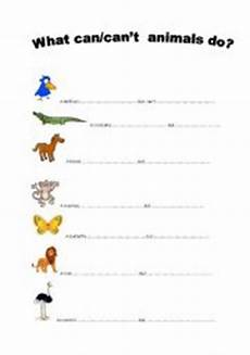 can animals do worksheets 13837 teaching worksheets can can 180 t