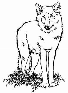 20 besten ideen wolf ausmalbilder beste wohnkultur