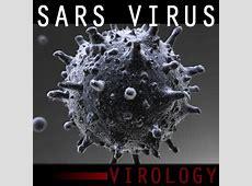 coronavirus review