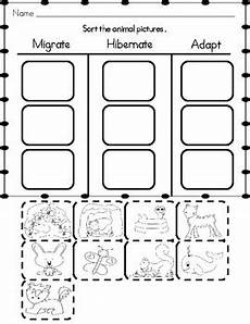 animals in winter worksheets for kindergarten 14199 animals in winter a mini unit by grade and fabulous tpt