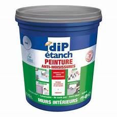 peinture toiture castorama peinture anti moisissures murs int 233 rieurs dip blanc 0 75l