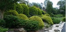steilen hang bepflanzen how to plant trees and shrubs on a slope today s homeowner