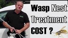wasp nest removal or treatment cost reading newbury