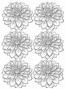 six dahlia flower flowers coloring pages