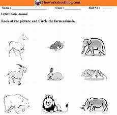 animals around us worksheets 14065 animal around us worksheet theworksheetsblog