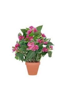 kunstpflanzen k 252 nstliche pflanzen auf rechnung kaufen