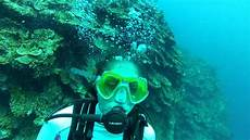 montego bay scuba dive 3 of 6 active panic in open water diver youtube