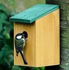 Maison Nichoir En Bois Perchoir Mangeoire A Oiseau Moineau