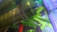 mon aquarium d eau douce 233 clairage 224 led marin