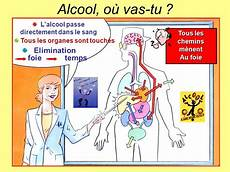 temps elimination alcool l alcool fruit de la nature et du hasard ppt t 233 l 233 charger