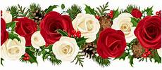 christmas roses clipart 20 free cliparts download images clipground 2020