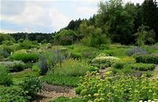 staudengärtnerei gaissmayer veranstaltungen staudeng 228 rtnerei gaissmayer illertissen pflanzenreich