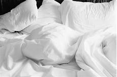 ᐅ silberfische im schlafzimmer bett bek 228 mpfen tipps
