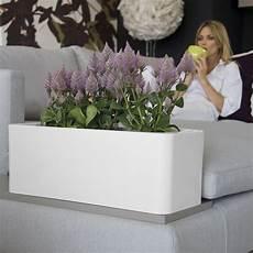 viridea vasi fioriera a cassetta per vasi e piante calypso nicoli