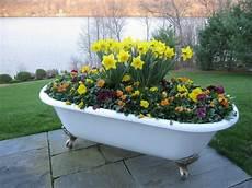 pot de fleur jaune fleurs en pot conseils et id 233 es pour enjoliver le jardin