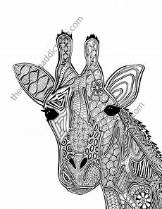 giraffe coloring page animal coloring page