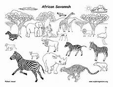 coloring pages ecosystem animals 16973 1000 images about africa unit study on animal habitats classroom