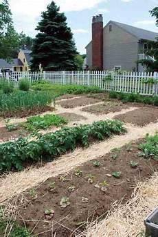 Kitchen Garden A To Z by Easy Kitchen Garden Step By Step Organic Gardening
