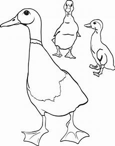 free printable duck with ducklings coloring