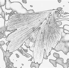 aquarell vorlagen zum ausdrucken fabelhaft pin ausmalbild