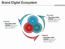 brand digital ecosystem powerpoint templates powerpoint slide template presentation