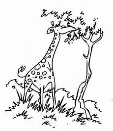 ausmalbild tiere giraffe mit baum kostenlos ausdrucken