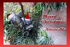 quot merry christmas from australia quot by missmoneypenny redbubble