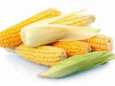 Health Benefits Of Corn Healthy Living Indiatimes