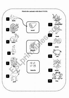 animal movement worksheets 13953 animal movements esl worksheet by claudiaabreu