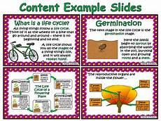 the life cycle of a flowering plant powerpoint and worksheet teaching resources