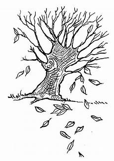 Herbst Baum Malvorlage Malvorlage Baum Im Herbst Ausmalbild 7586 Images