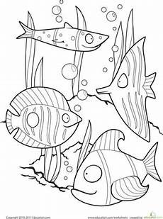 color the fancy fish worksheet education