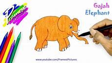 Gajah Belajar Menggambar Dan Mewarnai Gambar Binatang