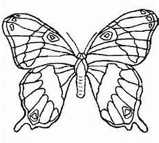 Ausmalbilder Pferde Schmetterling Schmetterling Malvorlage 06 Malvorlagen Ausmalbilder