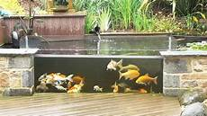 bassin koi interieur bassin 224 ko 239 s et autres poissons hors sol sous la pluie